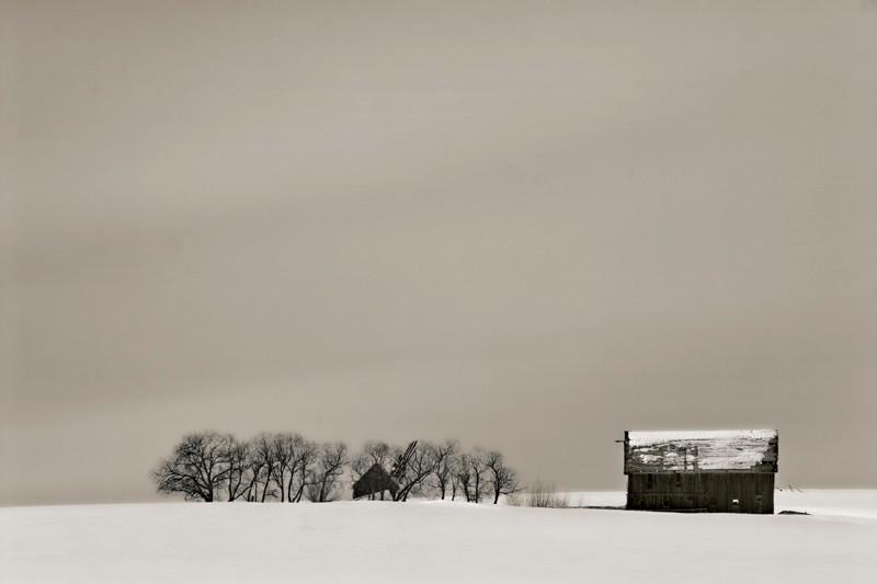 Idaho - Old Barn & Trees Under Gray Sky