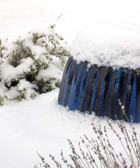 Cobalt and snow...<br /> a large cobalt flower pot from Vietnam resting... upside down...<br /> in a small Missouri town in the backyard of an insignificant middle-aged couple.
