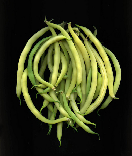 Wax Beans and Green Beans
