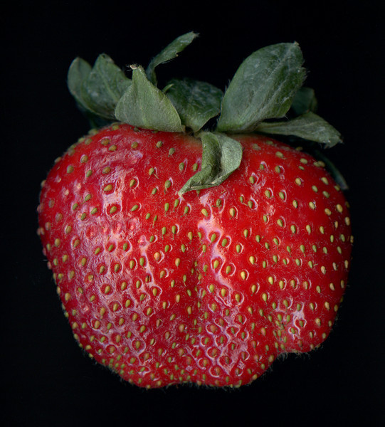 Significant Strawberry