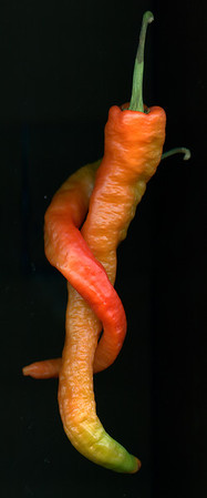Passionate Peppers