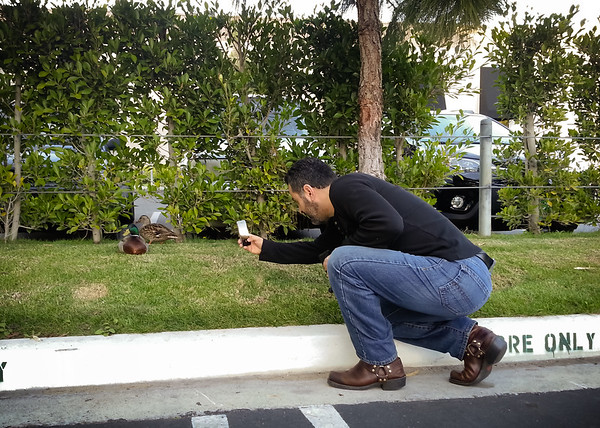 Dori photographs some ducks during our afternoon coffee walk