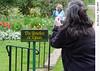 A Sue Bielawski: garden 1
