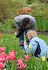 C Sue Bielawski: garden 2