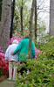 C Sue Bielawski: garden 7.1
