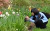 C Sue Bielawski: garden 5.1