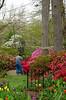 C Sue Bielawski: garden 3