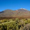 Mt. Teide National Park
