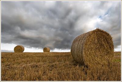 make-hay