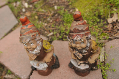two little knomes