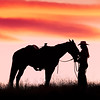 Silhouette of horse and rider, Shell, Wyoming