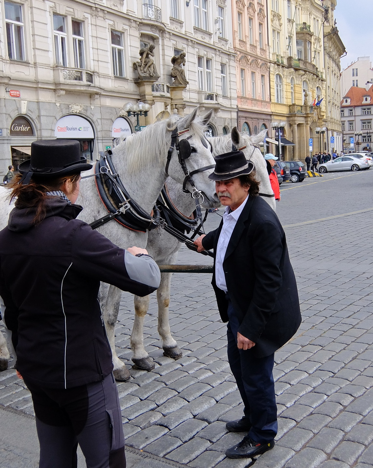 You can take a carriage through parts of Prague