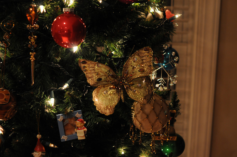 One of my butterfly ornaments and one with Shelby's photo in it.