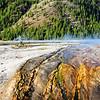 Yellowstone National Park 201