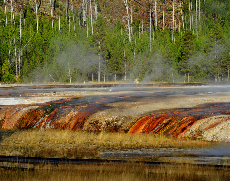 Yellowstone National Park 200