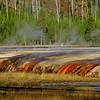 Yellowstone National Park 200