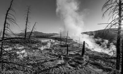 Manmoth Hot Springs Yellowstone National Park