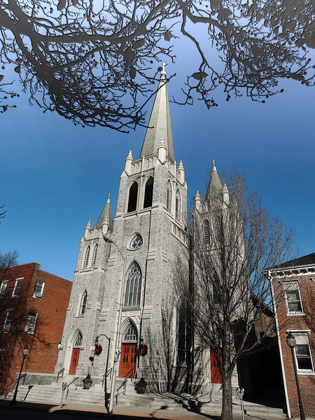 St. Mary's amidst the branches