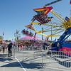 Taking Flight at the Fair