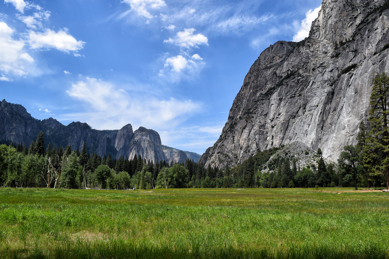 Grassy Field Next to Yosemite Mountains