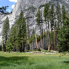 Beautiful Day in Yosemite National Park
