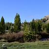 Yosemite National Park 105