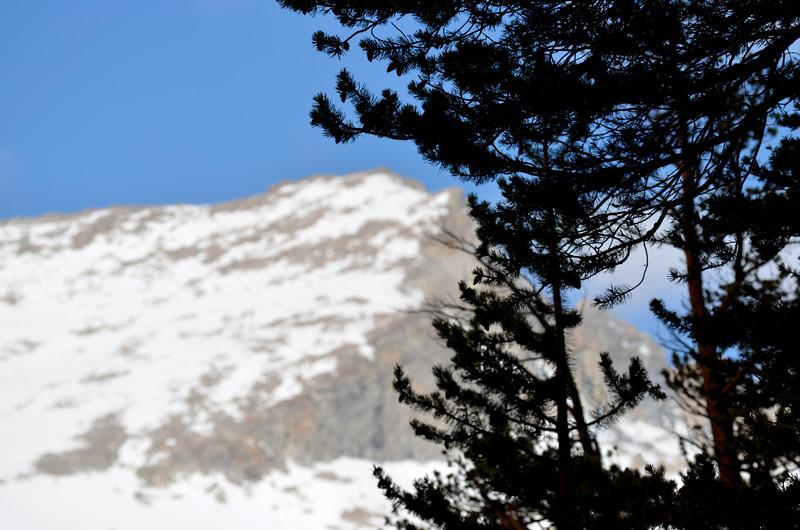 Yosemite in Springtime 1002