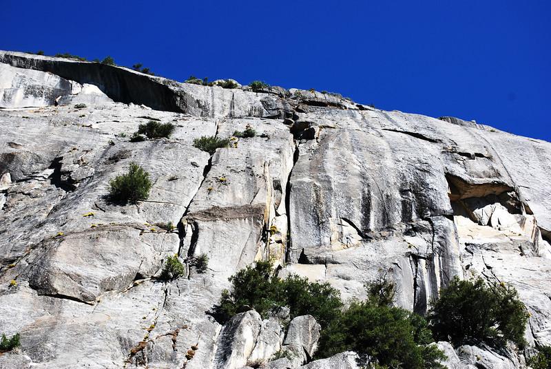 Yosemite National Park in California 10