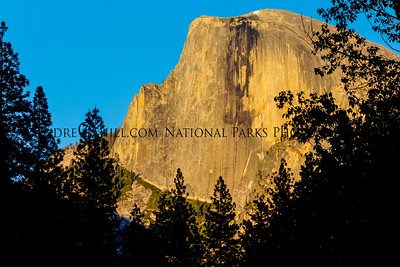Close-up of Half Dome at Sunset