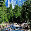 Yosemite in summer 4