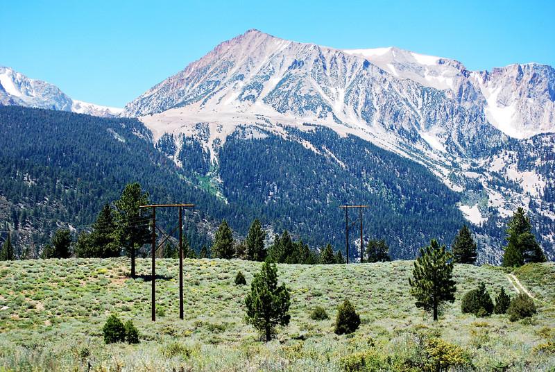 Telephone Poles in Yosemite!