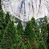 Yosemite National Park in California 11