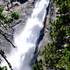 Yosemite National Park in California 41