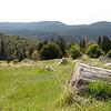 Forista, Yosemite NP