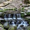 Fern Spring, best water in Yosemite