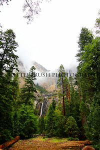 Upper and Lower Yosemite Falls, Yosemite National Park.
