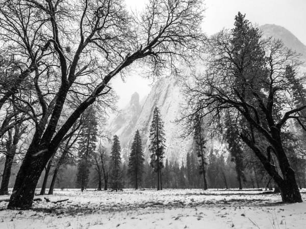 <center><b>Yosemite Valley</center></b>
