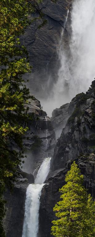 Yosemite Falls Through the Trees