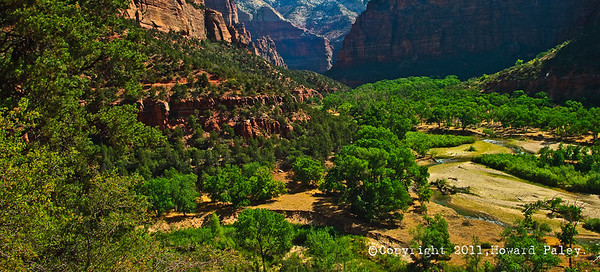 """Green Zone"", Zion National Park, Springdale, Utah."