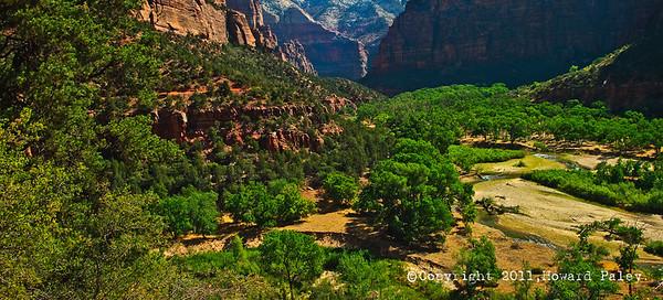 """""""Green Zone"""", Zion National Park, Springdale, Utah."""