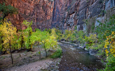Virgin River near the entrance to the Narrows