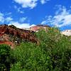 Zion National Park in Utah 11