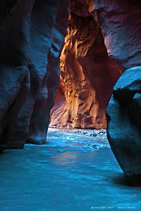"""Mood Indigo"", Zion National Park, Ut., Aug.'07"