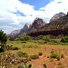Zion National Park in Utah 5