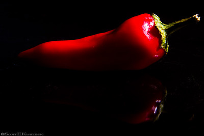 Red Chili Pepper 1