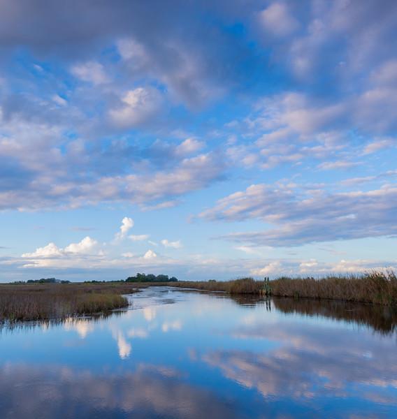 Bear Island wetlands, South Carolina