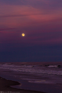 January Full Moon Over The Beach