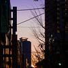 夜明け 大阪 2008 The dawn of Osaka