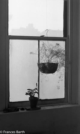 FB studio window 1972