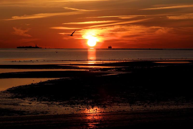 FU Sunrise 2010 1 003